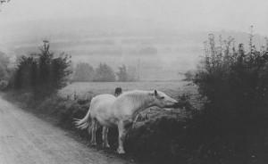 Henri Cartier-Bresson: I-R-eland